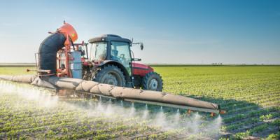 3 Insects Known to Damage Crops in Nebraska, Beatrice, Nebraska