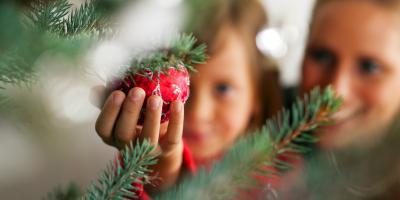 Top 3 Pest Control Tips for the Holidays, North Hobbs, New Mexico