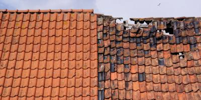 Why You Need Professional Disaster Restoration Services, Cameron, Wisconsin