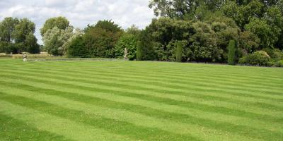 Why Lawn Striping Is More Than a Flashy Lawn Mowing Technique, Honolulu, Hawaii