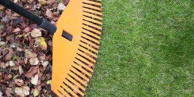 A Guide to Preparing Your Lawn for Fall, Fairfield, Ohio