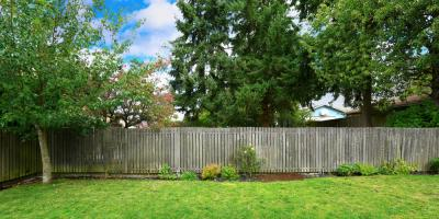 How to Incorporate Trees Into Your Property Fencing, Cookeville, Tennessee
