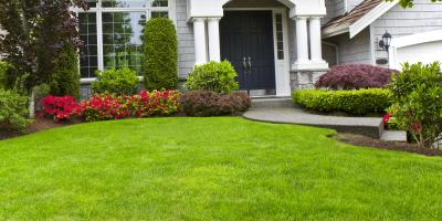 Do's & Don'ts of Caring for a Newly Seeded Yard, St. Peters, Missouri