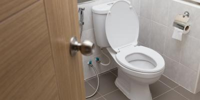 3 Signs You Need Sewer Line Repairs, Lexington-Fayette, Kentucky
