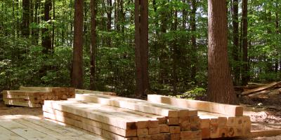 How Does Harvesting Hardwood Lumber Affect Soil Composition?, Middlefield, Ohio