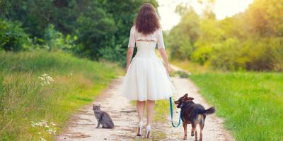 4 Tips for Including Your Pet in a Wedding Ceremony , Covington, Kentucky