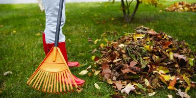 4 Lawn Maintenance Tips for Fall Cleanup, Lexington-Fayette, Kentucky