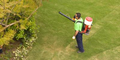 Pest Control Tips to Follow for Spring, North Haven, Connecticut