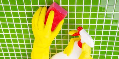 When Is Mold Removal Covered by Insurance?, Lake Havasu City, Arizona