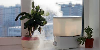 Can a Home Humidifier Benefit Your Health?, 29, Nebraska