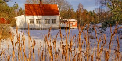 Top 3 Winter Landscaping Projects for Spring, Suffield, Connecticut