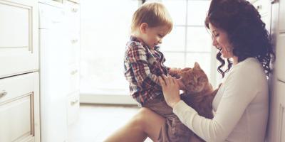 3 Simple Ways to Make Custody Arrangements Easier for the Kids, Sparta, Wisconsin