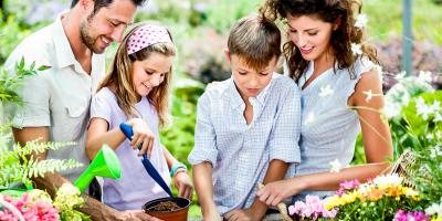 3 Tips to Maintain a Beautiful Garden This Summer, Holland, Wisconsin