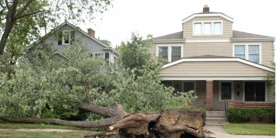 5 Ways to Prepare for Hurricane Season in Connecticut, Willimantic, Connecticut
