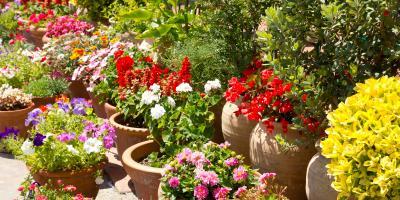 3 Tips for Building a Container Garden, Anchorage, Alaska