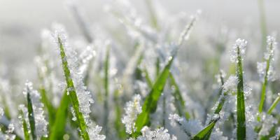 3 Effects Snow Has on Your Lawn, Eldersburg, Maryland