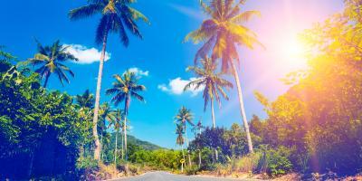 Window Screen Experts Explain How to Save on Energy Bills, Kula, Hawaii