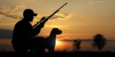 3 Safety Tips for Dogs During Hunting Season From Local Pet Supplies Dealer, Foristell, Missouri