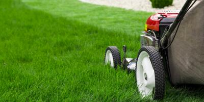 Experts Explain Proper Lawn Service Timeline, Buffalo, Pennsylvania