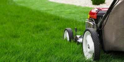 4 Spring Lawn Care Tips, Hamilton, Ohio