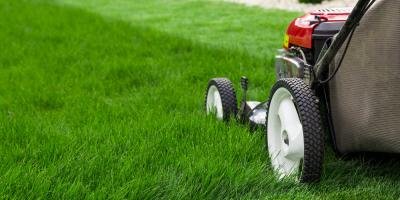 Why It's Important to Cut Grass at the Correct Height, Milford, Connecticut