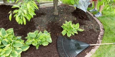 5 Essential Outdoor Tasks a Home Maintenance Company Can Do for You, Watauga, Texas