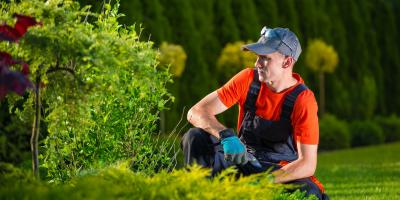 3 Benefits of Mulch in Landscape Design, Kettering, Ohio