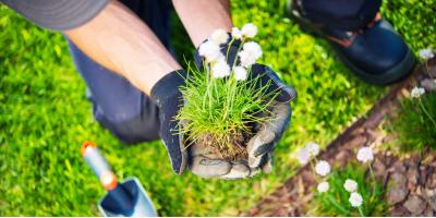 5 Characteristics to Look for in a Quality Landscaping Company, Washington, Missouri