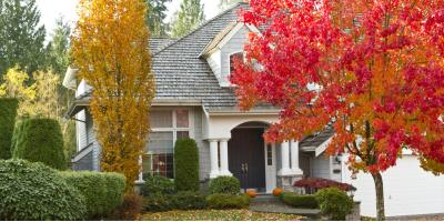 Tree Care Tips to Consider This Fall, Newport-Fort Thomas, Kentucky