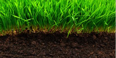 Lawn Treatment Experts Share 5 Tips to Improve Soil, Lincoln, Nebraska