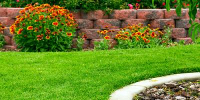 How to Identify Drainage Problems on Your Lawn & Landscaping, Delhi, Ohio