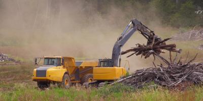 3 Factors to Consider Before Land Clearing , Eleele-Kalaheo, Hawaii