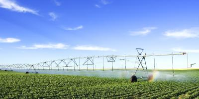 How to Make the Most of Your Irrigation System, ,