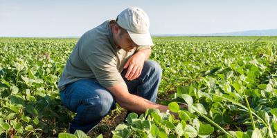 A Guide to Farm Insurance, Somerset, Kentucky