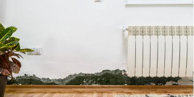 Top 3 Signs Your Home Needs Mold Remediation, Greensboro, North Carolina