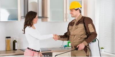 When to Contact a Professional for Pest Control, Charlotte, North Carolina