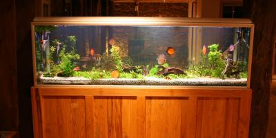 How to Move a Fish Tank, Cincinnati, Ohio
