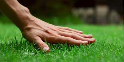 What to Look For in a Sod Company, O'Fallon, Missouri