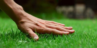3 Ways to Get Your Landscape Design Summer-Ready, Lyndhurst, Virginia