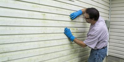 When to Clean, Repaint, or Replace Siding, Norwood, Ohio