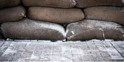 New Car Dealers Answer the Question—Does Putting Sandbags in Your Trunk Improve Traction?, Woodbridge, Connecticut