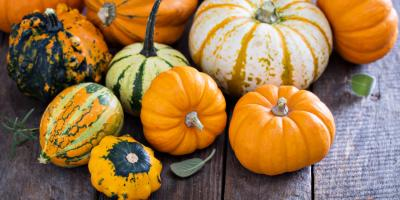 5 Types of Squash to Try This Fall & Winter, Byron, Wisconsin