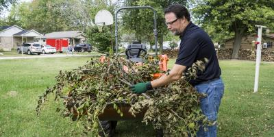 4 Tips to Help Your Landscaping Recover From Harsh Weather, Jessup, Maryland