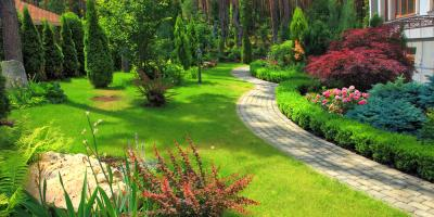 3 Essential Tips for Amazing Landscaping , Honolulu, Hawaii