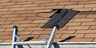 3 Foolproof Ways to Detect a Roof Leak, Loveland, Ohio