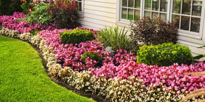 3 Ways Landscaping Projects Will Increase the Value of Your Home, Uniontown, Ohio
