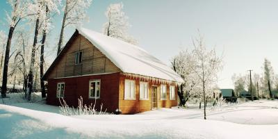 A Guide to Wrapping Trees for Winter, Kalispell, Montana