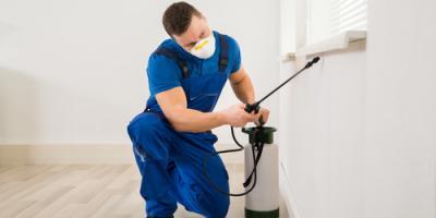 4 Ways to Choose a Dependable Pest Control Company, Newark, Ohio