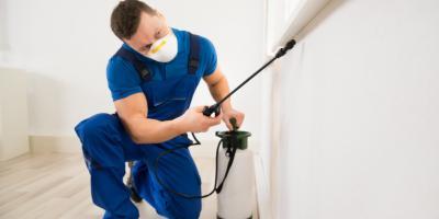 The Dangers of Treating Bedbugs Yourself, Trenton, Ohio