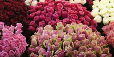 Gap's Premier Florist Remains Open After Fire, Salisbury, Pennsylvania